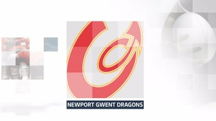 Newport Dragons badge