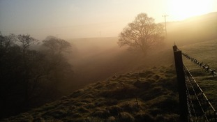 Mist at Elslack Skipton