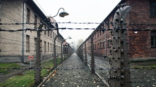Victims of Nazi persecution reveal harrowing tales of cannibalism and torture in newly released files