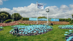 Handcrafted forget-me-not flowers in a  remembrance garden on Plymouth Hoe