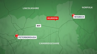 A man has been arrested on suspicion of murder following the discovery of a woman's body.