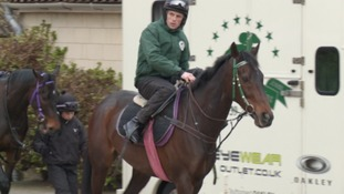 17 West Country Horses In The Grand National West Country Itv News