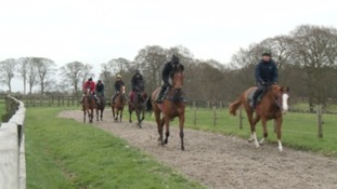11 West Country horses in the Grand National