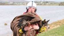 Volunteer lifeboat crew member Chris Buchanan carrying the dog to safety