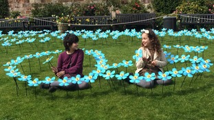 Hundreds of steel Forget Me Nots unveiled at Shrewsbury Castle