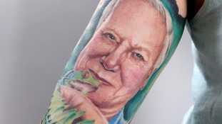 Woman gets large tattoo of Sir David Attenborough's face