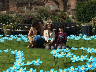 Severn Hospice 'overwhelmed' by interest in Forget Me Not ...