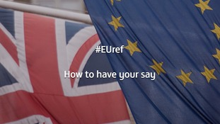 Should the UK remain in the EU, or leave the EU?