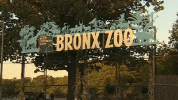 New York's Bronx Zoo