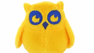 Stuffed owl toys celebrating night tube go on sale.