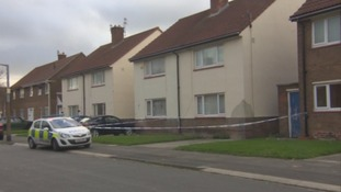 Family had mental health concerns over boy who killed dinner lady