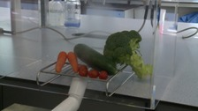 Trials of a potentially 'world-changing' technology aimed at prolonging the life of fresh produce have proved successful