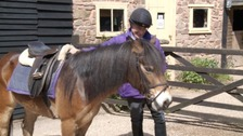 Michael Woodcock will spend the next ten weeks learning to ride so he can take part with pony Apollo