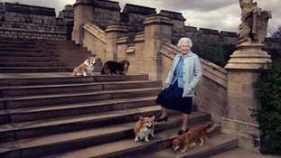 The third picture captures the Queen walking in the private grounds of Windsor Castle with her dogs.