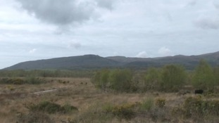 Dyfi Nature Reserve in Ceredigion