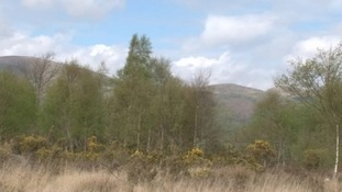 Dyfi Nature Reserve
