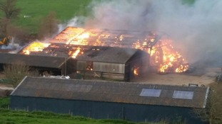 12 engines tackle massive Dorset farm fire