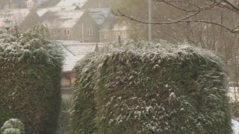 TOD_SNOW