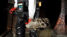 Water firm blames restaurants for 'fatbergs'