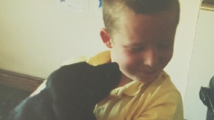 Appeal for missing dog bought to help boy through surgery