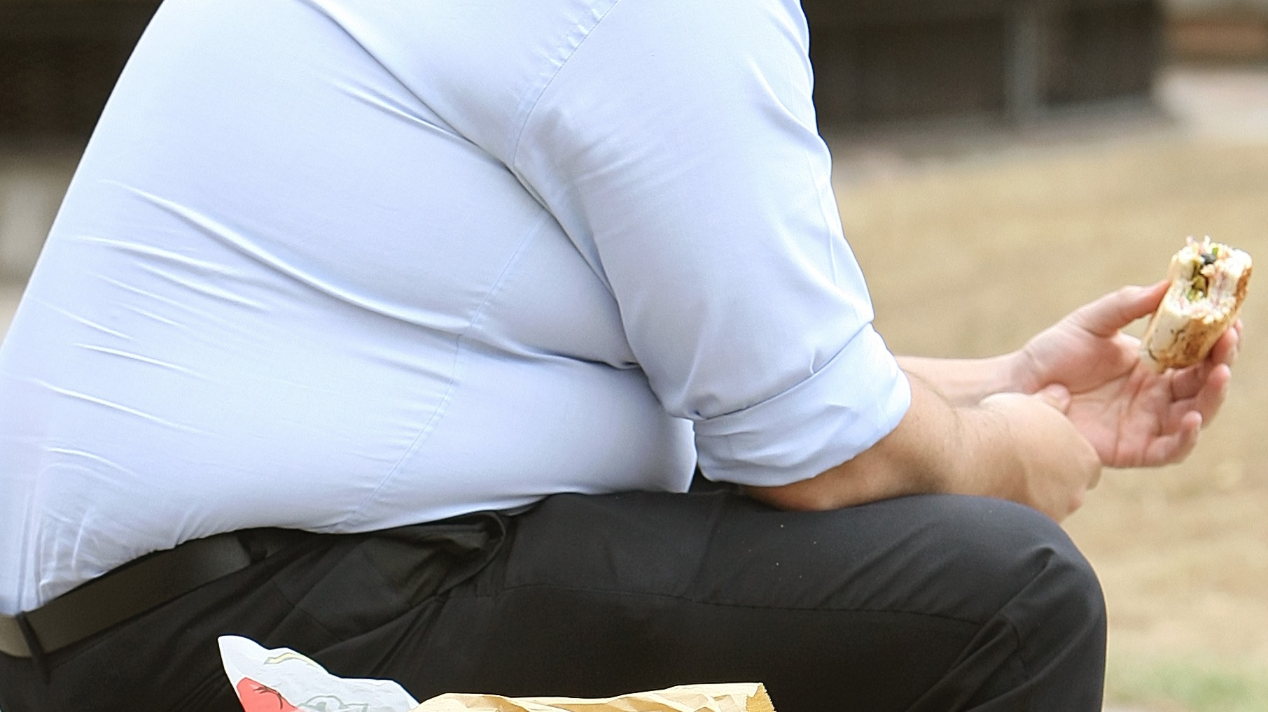 the problem of obesity in america in can big food regulate itself fat chance an article by mark bitt The fat cats in canberra would prefer a fat tax but their is fat chance that will happen  which cause obesity if a fat tax can reduce consumption of junk food (and data on this should be.