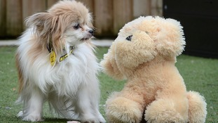 Trudy with teddybear