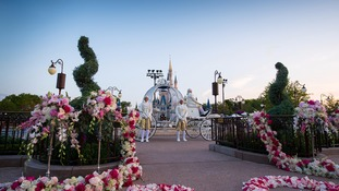 Disney announces new fairytale wedding venue