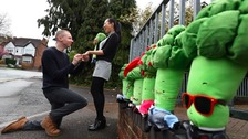 Man proposes with Broccoli toys!