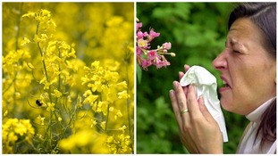 Figures show Welsh hay fever sufferers lose more than an hour's sleep a night