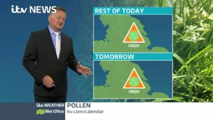 High pollen count expected for Thursday