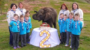 Sutton turned two at West Midland Safari Park