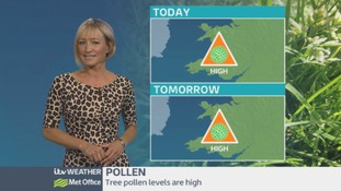 Pollen count: Not the best of news!