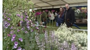 Crowds admire the work on show at Malvern