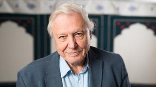 Sir David turns 90 on Sunday