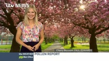 Jo Blythe has the latest pollen count