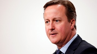 David Cameron made the comments during a meeting with the Queen.
