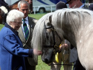 The Queen with one of her horses at the Royal Windsor Horse show in 2011