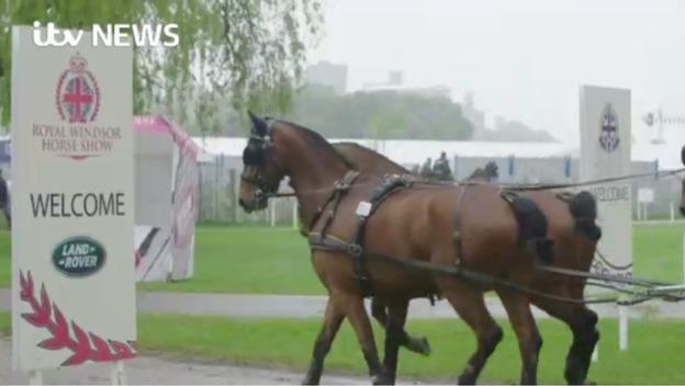 P-Horse_show_cancel_sot
