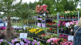 Over 60 exhibitors showcase home and garden products