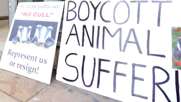 Animal rights placards outside a branch of Tesco in Nottingham city centre