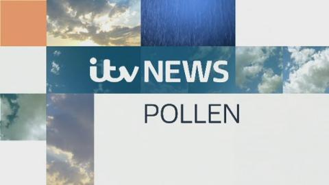 PAN_POLLEN_WEATHER_190516
