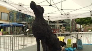 The Black Dog of depression hits Exeter