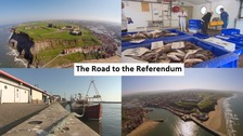 The Road to the EU Referendum