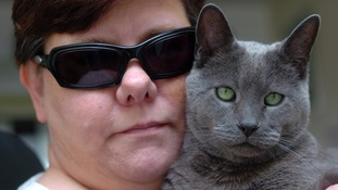 Pickles the guide cat helps visually impaired owner around the house