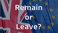Remain or Leave? ITV News examines the key issues