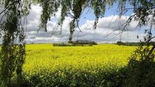 Finedon, Northamptonshire