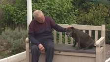 Man's fury after alsations attack his dog