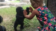 Five-month-old Gus meets a toddler