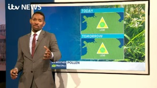 Low levels of tree pollen as we approach the bank holiday weekend.