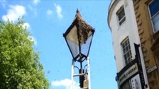 A swarm of bees causes a buzz in Bristol City Centre
